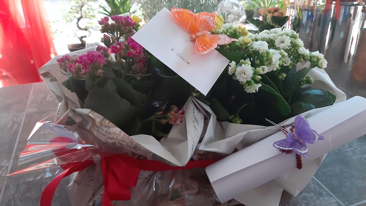 Mazzo di fiori Naturalmente Piante e Fiori